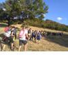 Festival dell'Appennino - Sentieri di pietra sulle montagne picene
